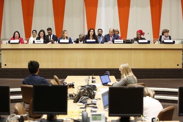 Consejo Económico y Social (ECOSOC)