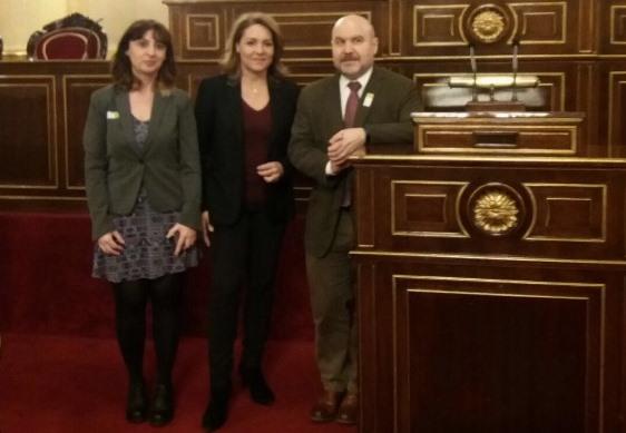 Fundación CERMI Mujeres revisa con Susana Camarero la agenda en materia de género y discapacidad de la legislatura