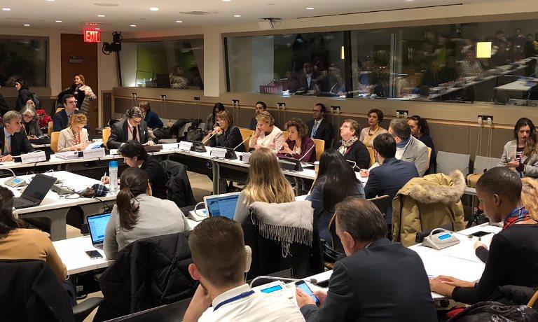 La Fundación CERMI Mujeres aborda en la sede de la ONU en Nueva York las principales reivindicaciones de las mujeres con discapacidad en el mundo rural