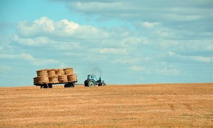 Imagen de la vida en el medio rural